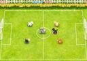 Haustier Fußball