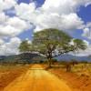 Kenianischer Straßenverlauf