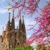 Blick auf die Sagrada Familia