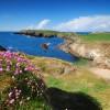 Wilde Küstenlandschaft Irlands