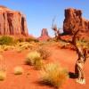 Blick über die Wüste Utahs