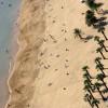 Blick über einen Sandstrand auf Teneriffa
