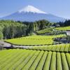 Blick auf den Fujiyama