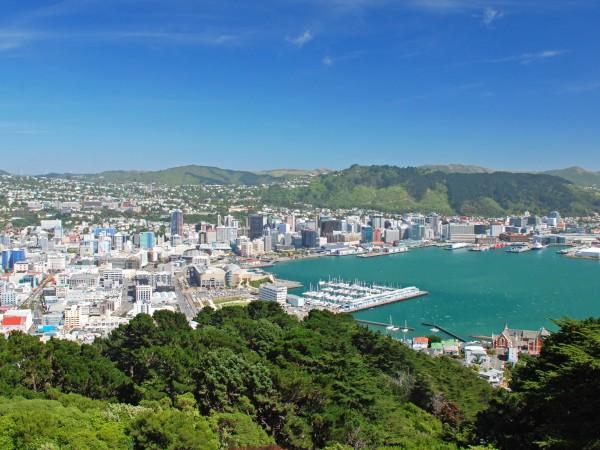Wellington city aus der vogelperspektive neuseeland for Vogelperspektive englisch